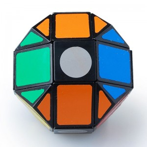 Lanlan Dodecahedron Paint Mask Speed Cube Puzzle Black