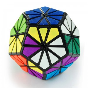 QJ 12-color Chrysanthemum Dodecahedron Puzzle, Cube Black