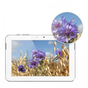 FNF Ifive 2S 9.7-inch Quad Core IPS Screen Tablet PC RK3188 Cortex A9 2 GB RAM 16 GB ROM Android 4.1 Dual Speaker