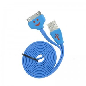 Smiling Face USB Male to 30-Pin Male Data Cable for iPhone 4 / 4S / iPad 1 /2 / 3 - Blue (100cm)