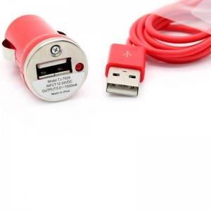 Car USB Power Adapter + 30-Pin USB Data/Charging Cable
