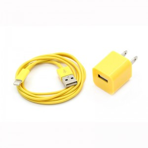 """1000mA"" USB AC Power Adapter + Lightning USB Cable for Apple iDevice"
