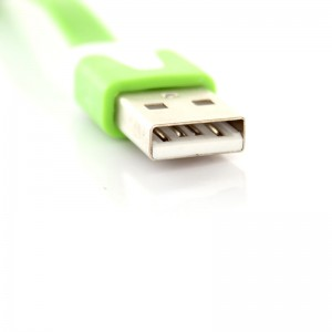 Flat USB Data/Charging Cable for iPhone iPad - Green (100cm)